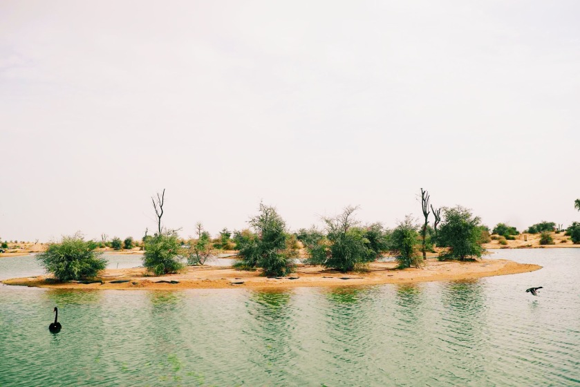 Processed with VSCO with c3 preset